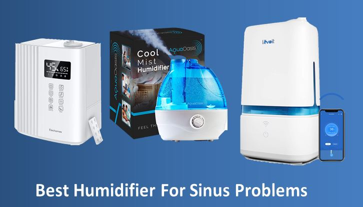 10 Best Humidifier For Sinus Problems In 2021